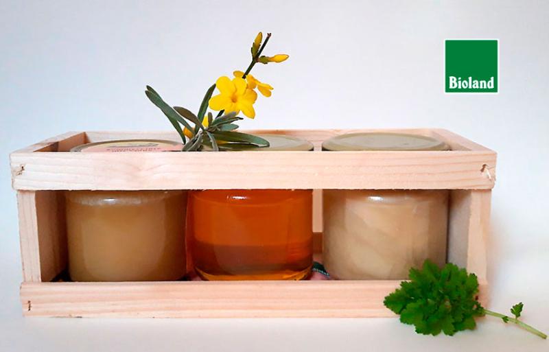 Honiggeschenk: Sommerblüte, Linde, Frühlingsblüte